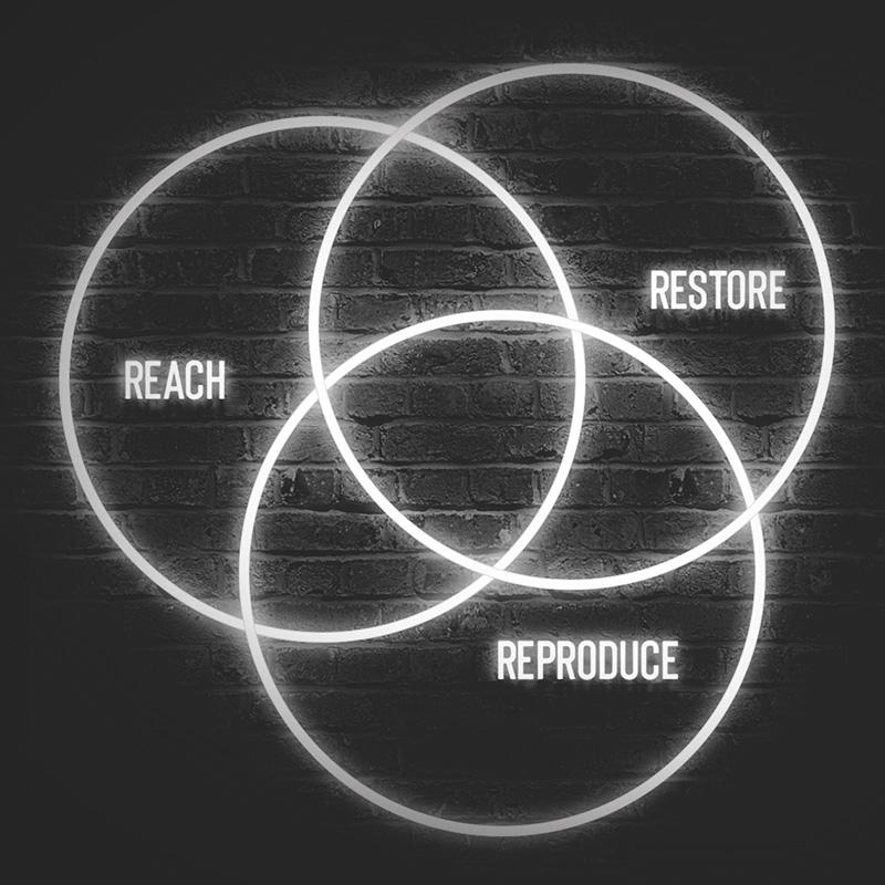 Restoring God's Dream for Our World