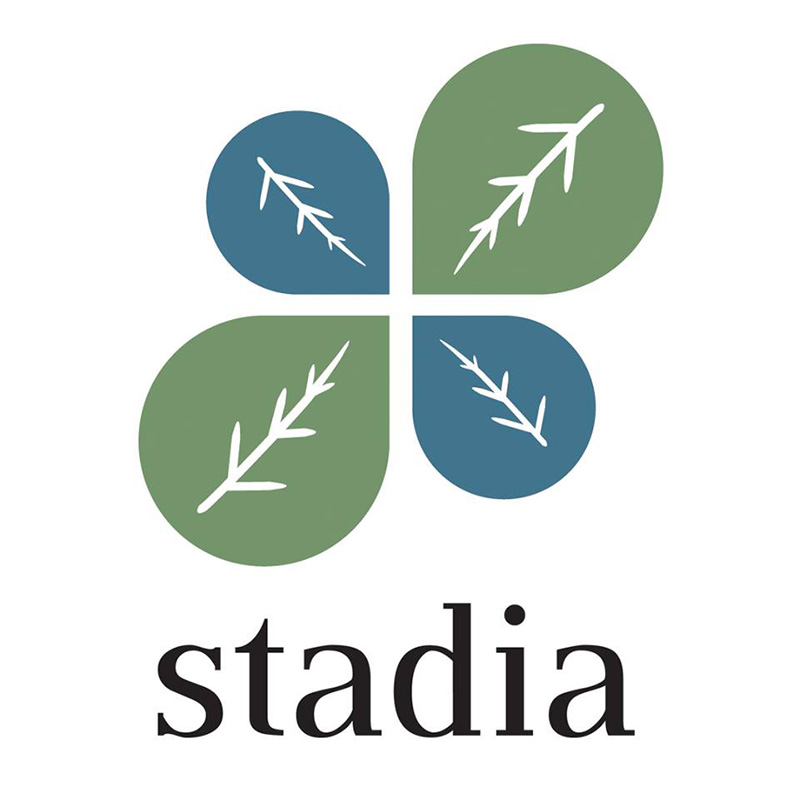 A Fortuitous Announcement for Stadia (Church Planting)