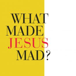 Book Review: 'What Made Jesus Mad?'